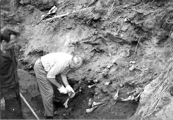 Исследования массового захоронения в г. Владимир-Волынский. 1997 г.
