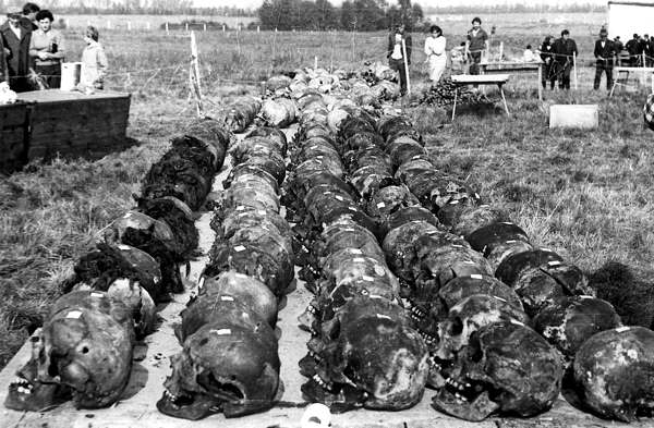 Демьянов Лаз. Черепа замученных, подготовленные к экспертизе