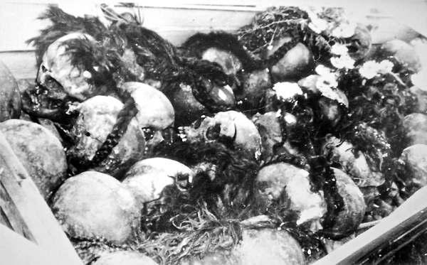 Демьянов Лаз. Женские косы, вынутые из второй могилы с черепами